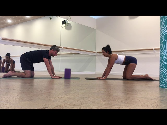 How To - Chaturanga Dandasana