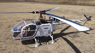 RC T-REX LAMA SA-315B (T-REX 550L) Test flight (2015/03/13)