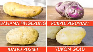 How To Use Every Potato & Why - The Big Guide | Epicurious