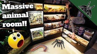Download ALL OF MY ANIMALS (150+)!  Full Animal Room Tour Mp3 and Videos