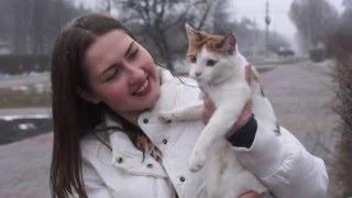 Кошка Дуся Город Добра Хвост Трубой