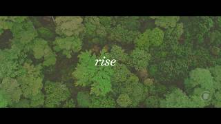 rise by monochromatic pictures