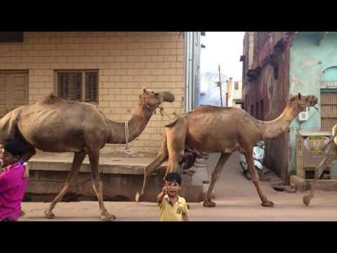 Backpack India: New Delhi to Mumbai