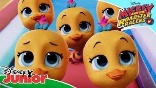 ✈️ Field Trip   T.O.T.S   Disney Channel Africa