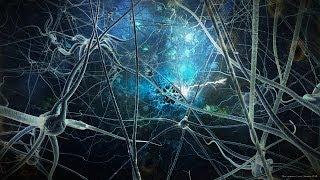 Im Grenzbereich von Bewusstsein und Materie - Dr. rer. nat. Klaus Volkamer