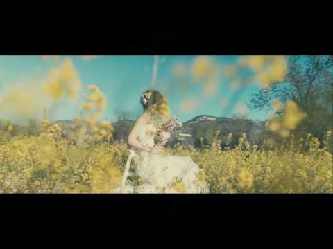 Spring on Alive Film...