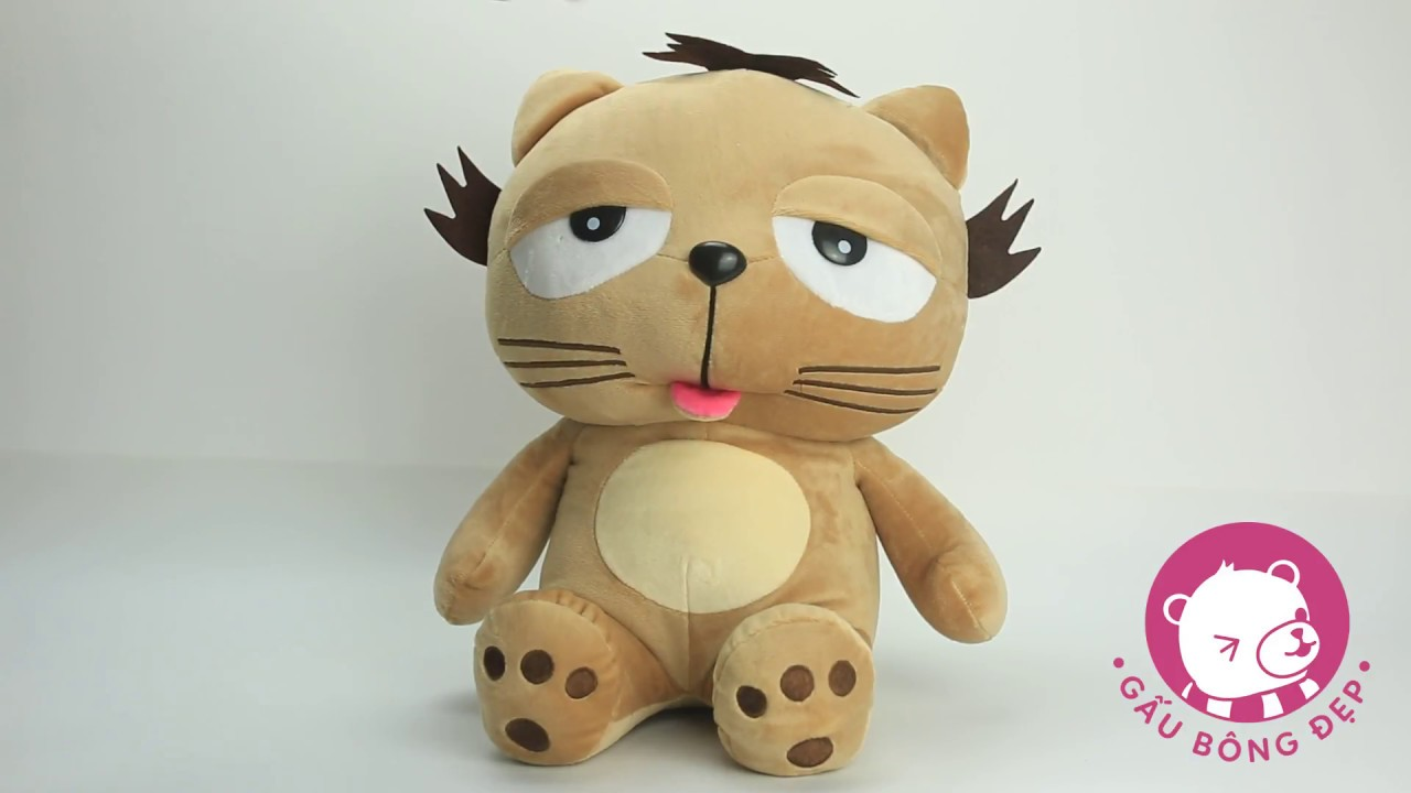Mèo bông Dinga - chú mèo lười có đôi mắt lim dim gợi đòn
