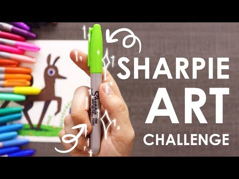 SHARPIE CHALLENGE - Art or Craft Supplies?