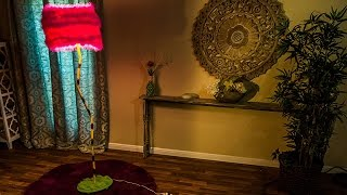 How To - Tanya Memme's DIY Dr. Seuss Truffula Tree Lamp - Home & Family