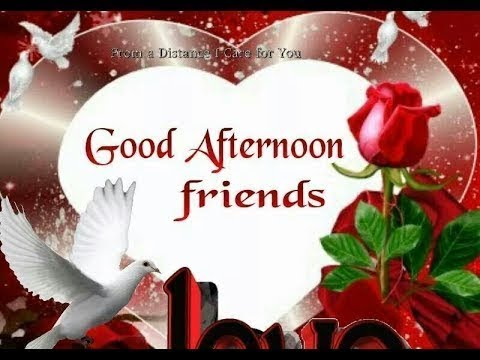 Good Afternoon Video Whatsapp Wishes Quotes Message Greetings