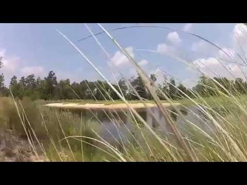 Cape Fear National Golf Club at Brunswick Forest Part Two
