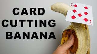 Learning to Throw Cards