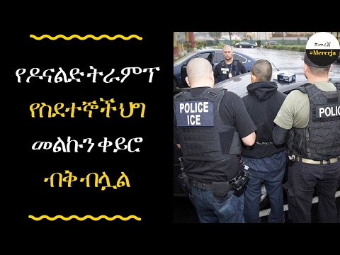 ETHIOPIA - Trump declares that ANYONE in the US illegally can be deported,