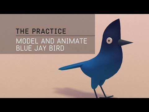 The Practice // 25 / Modeling and animating a blue jay in C4d