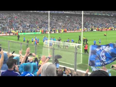 Dublin celebrate with Hill 16