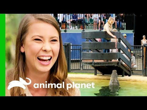 Bindi Irwin Is All About Continuing Steve Irwin's Legacy