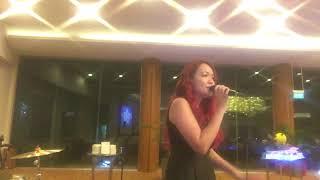 Quando, Quando, Quando Dreambird Music Live Music Entertainment for Corporate Events and Weddings