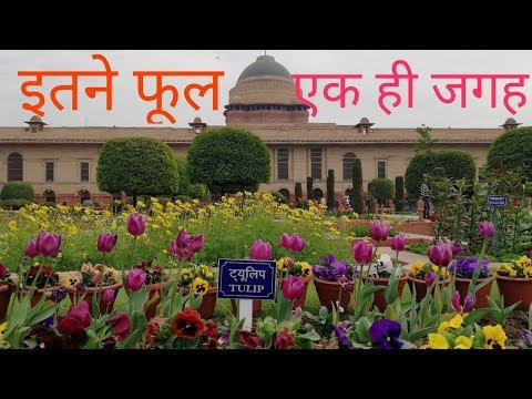 Mughal Gardens open for public now | Mughal Garden opening date 2018 | Imported Tulips Mughal Garden