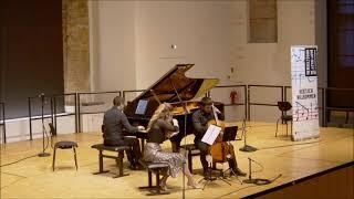 Brahms trio op.8