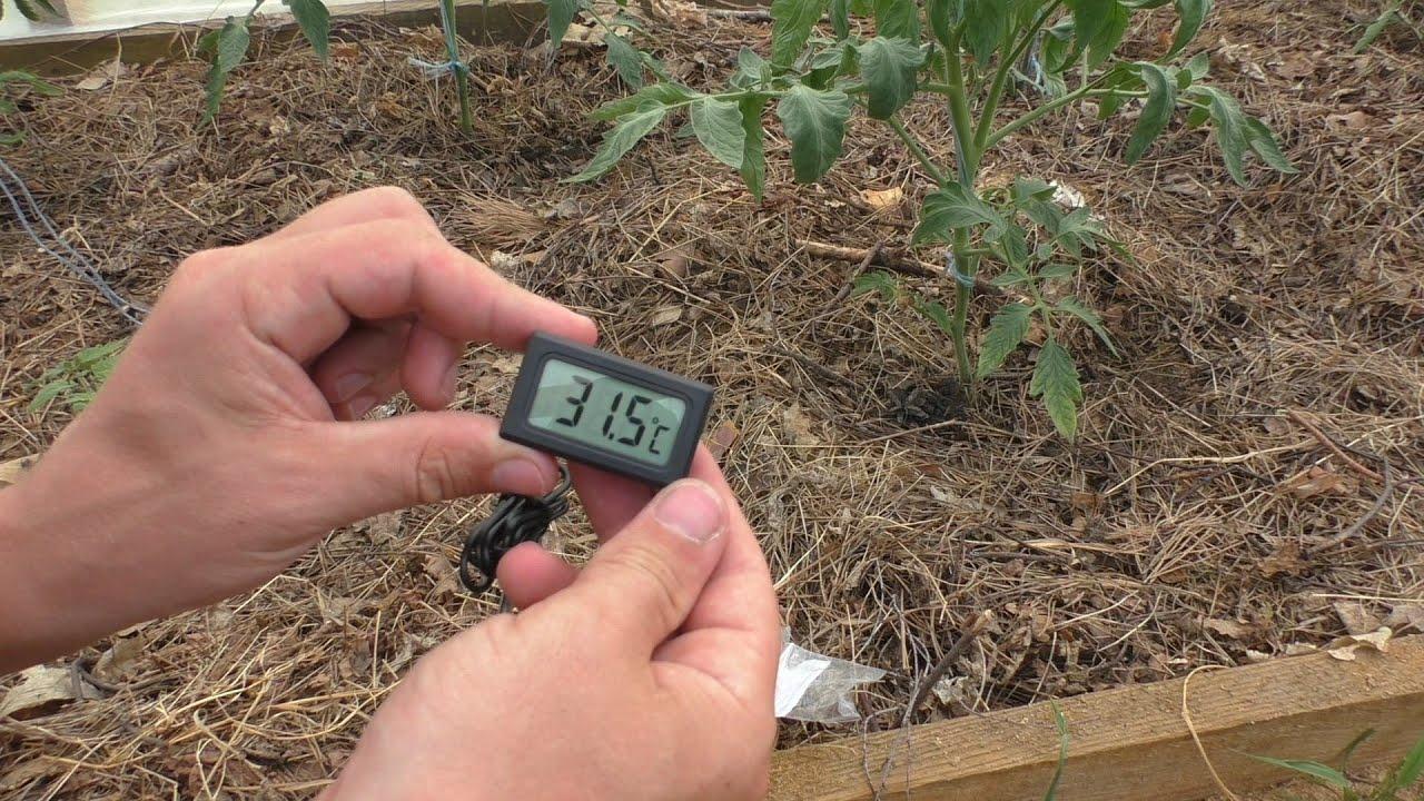Тем, кто ищет, где купить метеостанцию с цветным дисплеем и проекционными часами и те, которым нужны ртутные термометры, мы предлагаем.