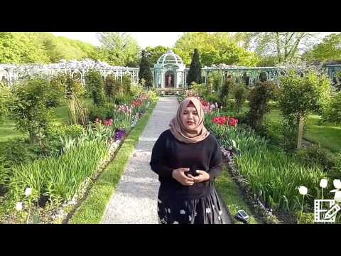 Internship in a Historical Garden in the USA arranged by The
