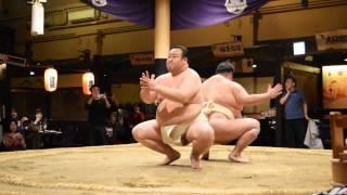 Sumo Restaurant in Tokyo