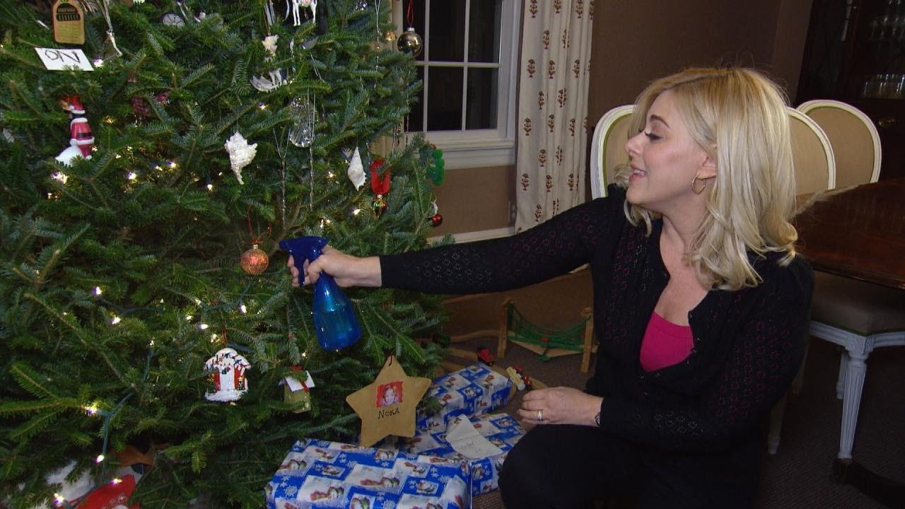 How To Keep Cats Off Christmas Trees.How To Keep Pets Away From Christmas Ornaments And Other Holiday Tricks