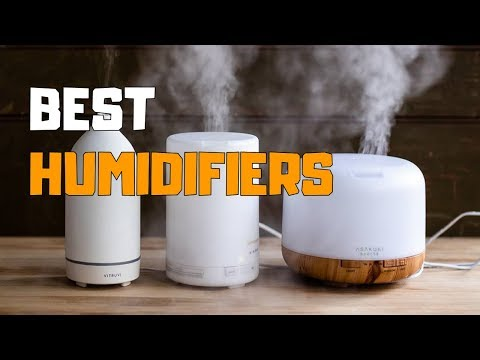 The 7 Best Humidifiers for Babies of 2020