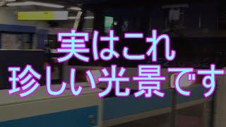 [JR根岸線] 関内駅のホームドアを通過する貨物列車を撮影してみた