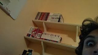 How to Start a Manga Collection (Tips for Beginners)