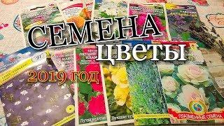 СЕМЕНА- ЦВЕТЫ 2019г/ лаванда/шток-роза/декоративная капуста/петуния/бархатцы#seed
