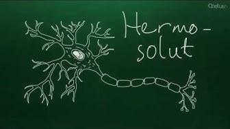 Hermosolu (yläkoulu)