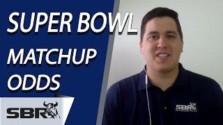 Super Bowl 50 Matchup Odds & Predictions: NFL Picks