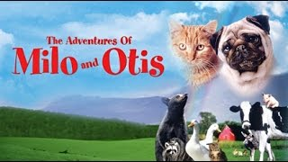 """If """"Animal Movie"""" Trailers Were Real Life - Milo & Otis Special Edition"""