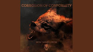Wolf Named Crow