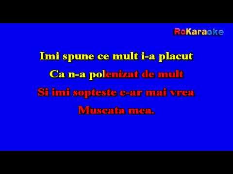 Stil VOLTAJ-Albinuta ro Karaoke teaser