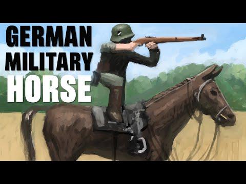 German Military Horse