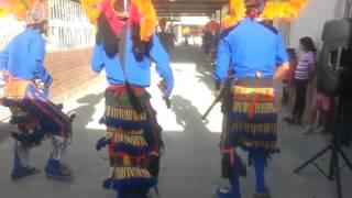 Danza los mayas de santa cruz lujan durango.