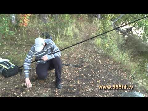 ловля ельца в лен обл