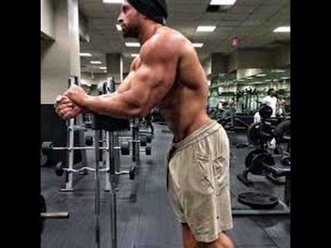 Bradley martyn workout plan - All For Workout
