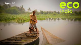 Eco India: The East Kolkata Wetlands face an existential threat from property developers