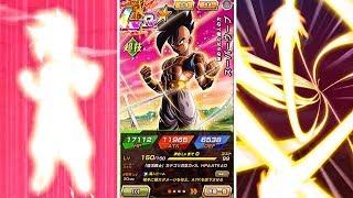 NEW FREE Transforming LR Majuub Super Attacks & Vegeta Jr. Details | Dragon Ball Z Dokkan Battle