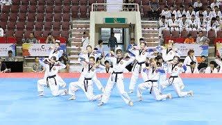 170731 K타이거즈 태권체조 결선 영상 모음 (K-tigers junior Taekwon Aerobic) [세계태권도한마당] by 비몽