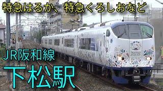 【JR阪和線】223系 225系 特急はるか 特急くろしお 下松駅発着&通過集
