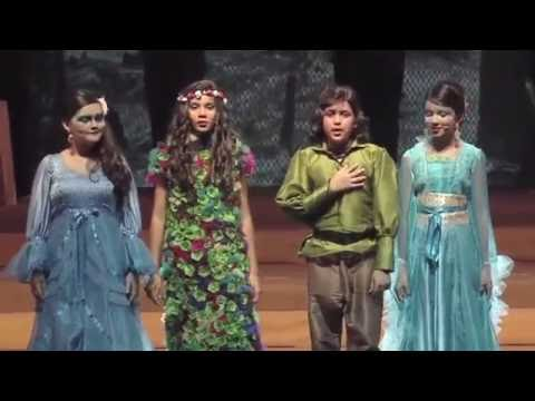 DAIS - Annual Day 2015 - Song of Prithvi - Part 2
