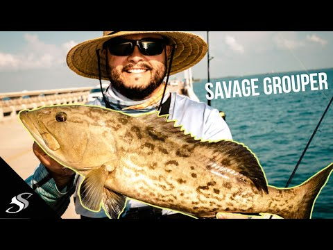 Skyway Pier Grouper Fishing With Light Tackle 😲