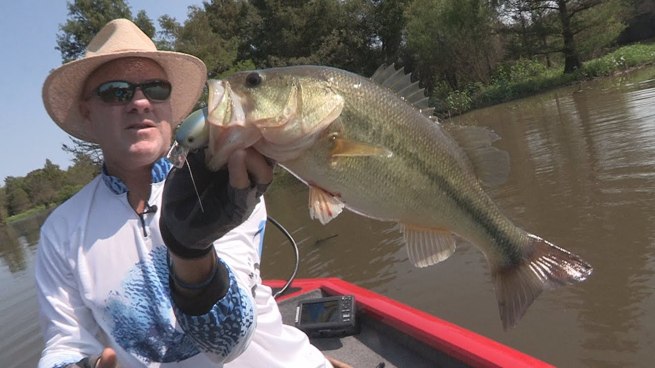 Fox sports outdoors southwest 28 2015 millwood lake for Millwood lake fishing report