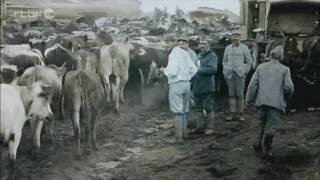 Extrait 7 Verdun