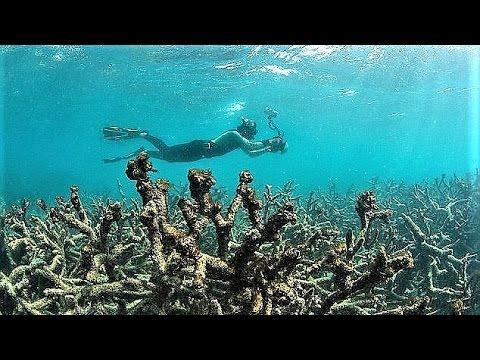 9 Worst Environmental Disasters