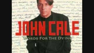 Watch John Cale Riverbank video